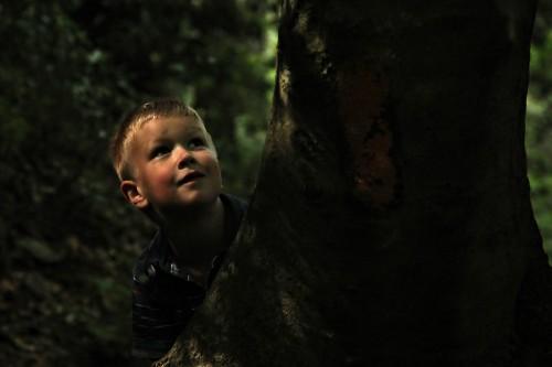 Sohnemann Finn im Wald