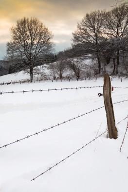Winterlandschaft am Bertramsmühler Bach in Solingen