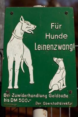 Dreibeiniger Hund