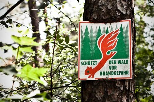 Waldbrandgefahr